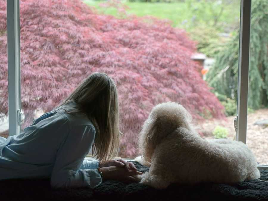 """She's hoping to turn Soul Sessions into a nonprofit so she can further her work.But she wants people to know, whether they're in Portland or elsewhere, """"they should think about setting up this kind of photo shoot"""" before the end comes.Jan is pictured with her dog, """"Marie."""""""