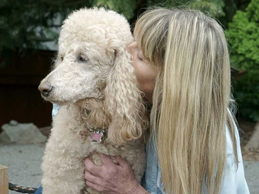 """Portland, Oregon-based photographer, Kristin Zabawa, is the owner of Soul Sessions and captures images of beloved pets in the final stages of life with their owners . And her work truly is a gift: She doesn't charge for the services.Jan is pictured with her dog, """"Marie."""""""