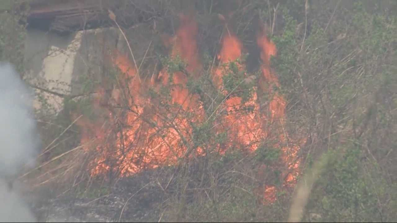 Firefighters are battling a large brush fire in Ipswich on Saturday afternoon.
