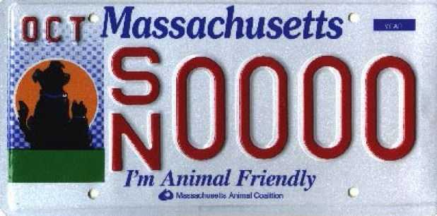 Massachusetts Animal Coalition --Proceeds from this plate benefit non-profit humane organizations and municipal animal control agencies in the Commonwealth.