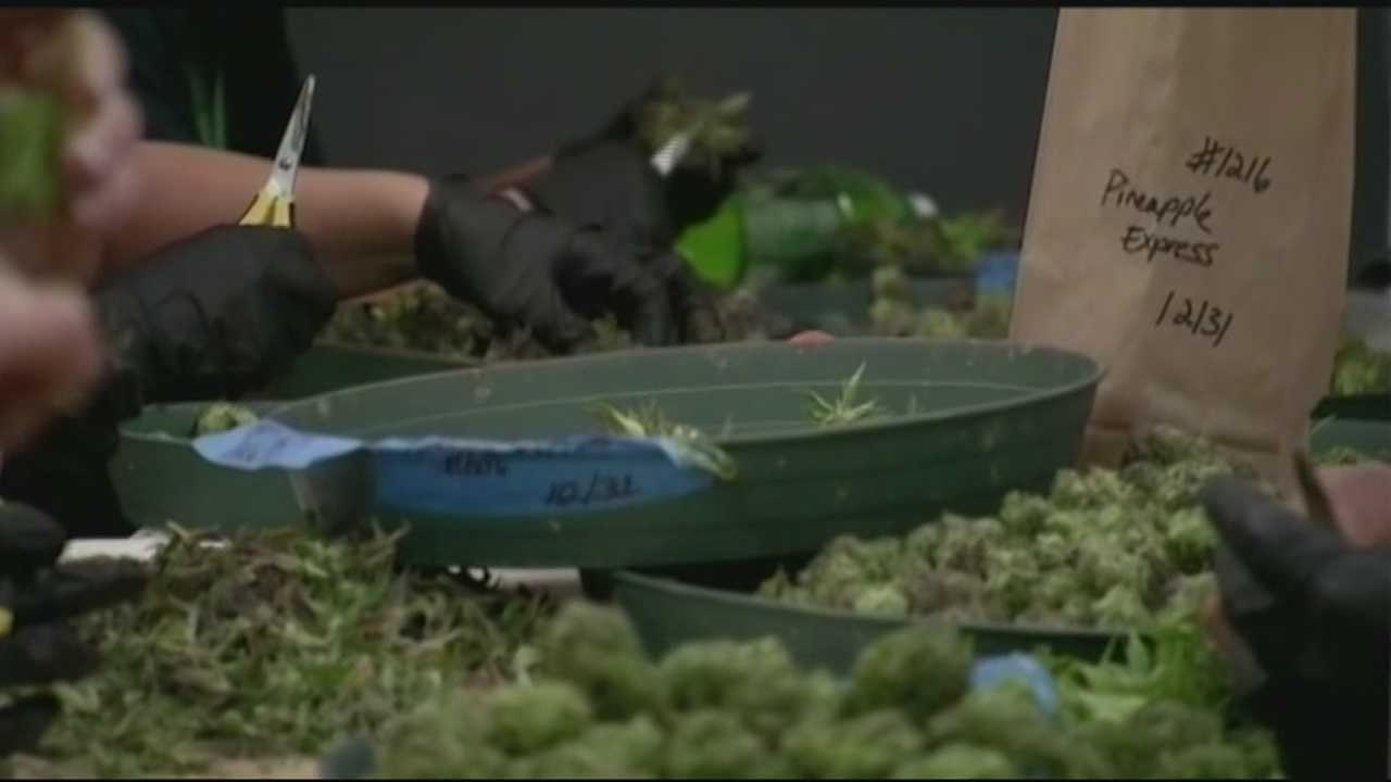 Medical marijuana is one step closer to reality in New Hampshire.