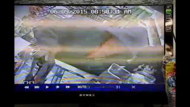 A man with an AK47 robbed Bud's Variety in Brockton, making off with cash and lottery tickets.  Video Courtesy:  The Enterprise