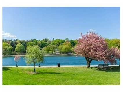 This is an unparalleled opportunity to own one of Brookline's landmark estates.