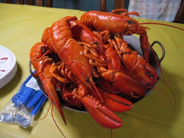 9.) Lobster. Everywhere else, it's a crustacean.
