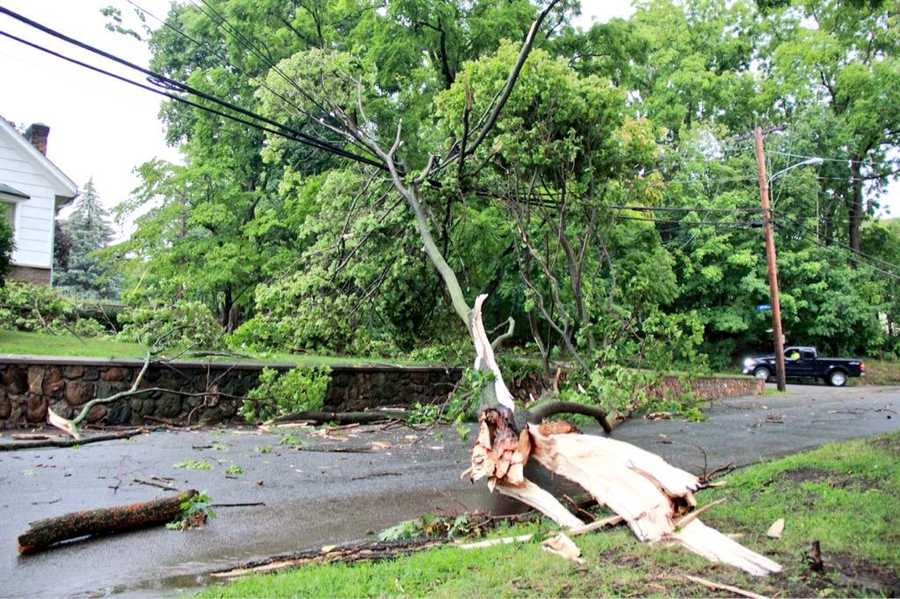 The storm ripped down this tree and wires in Johnston, Rhode Island, on Tuesday morning.