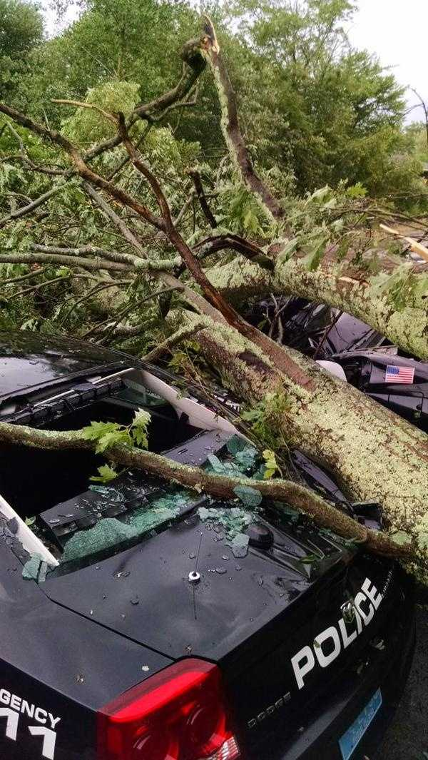 Barrington Police cars crushed by trees.