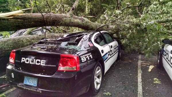 Trees down on Barrington Police cars.