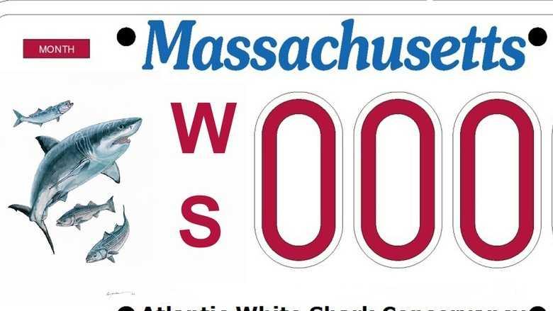 A great white shark license plate in Massachusetts is the goal of the Atlantic White Shark Conservancy.