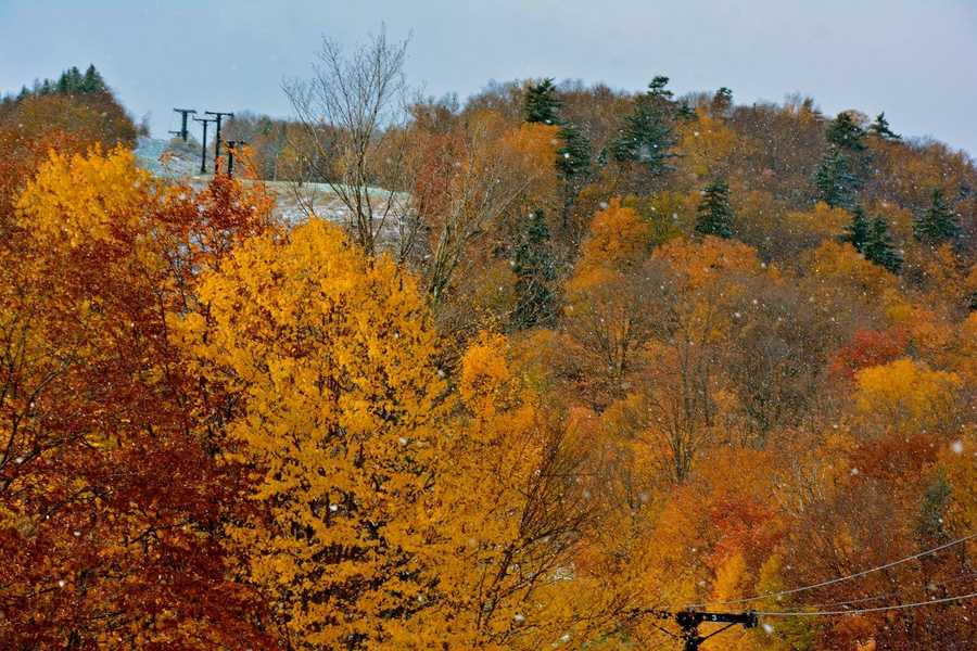 Snow flurries and fall foliage together show the rapidly changing seasons in Vermont.