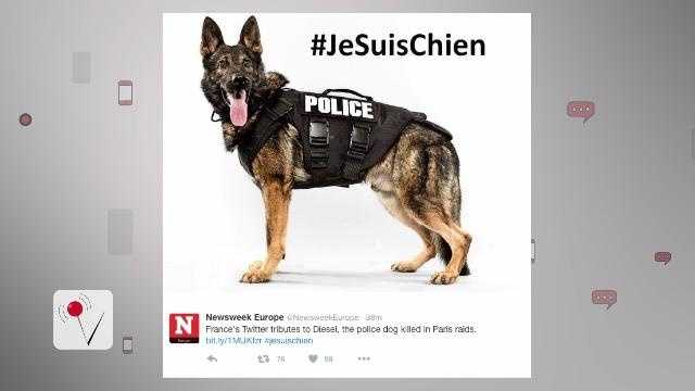 Diesel the dog dies when he gets between a suicide bomber and police during a raid in Paris.