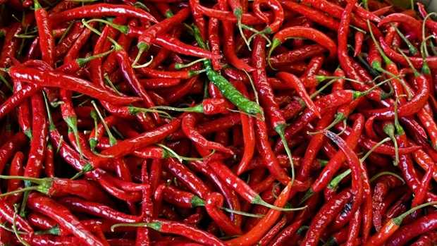 Chili and cayenne pepper contain capsaicin, which is responsible for many health benefits. Chili peppers contain vitamin A and immune-enhancing antioxidants, and also has been shown to lower blood pressure.