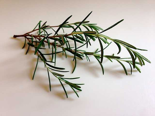 Rosemary has been shown to boost immune health, aid in digestion and stimulate circulation.