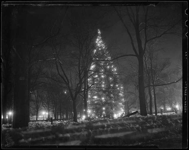 1934-1956 (approximate): Christmas Tree at Boston Common.