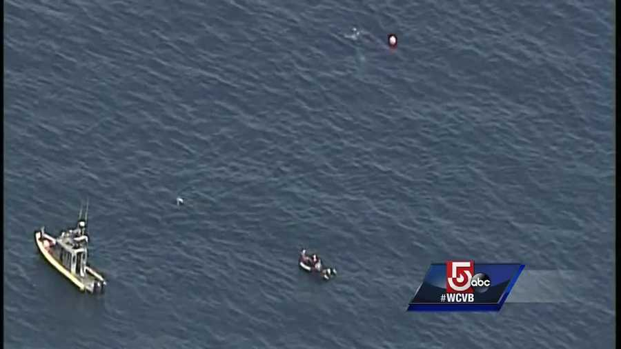 Environmental Police patrol vessel Thomas Paine, as well as several other boats, responded to assess the whale's condition and to try to untangle it.