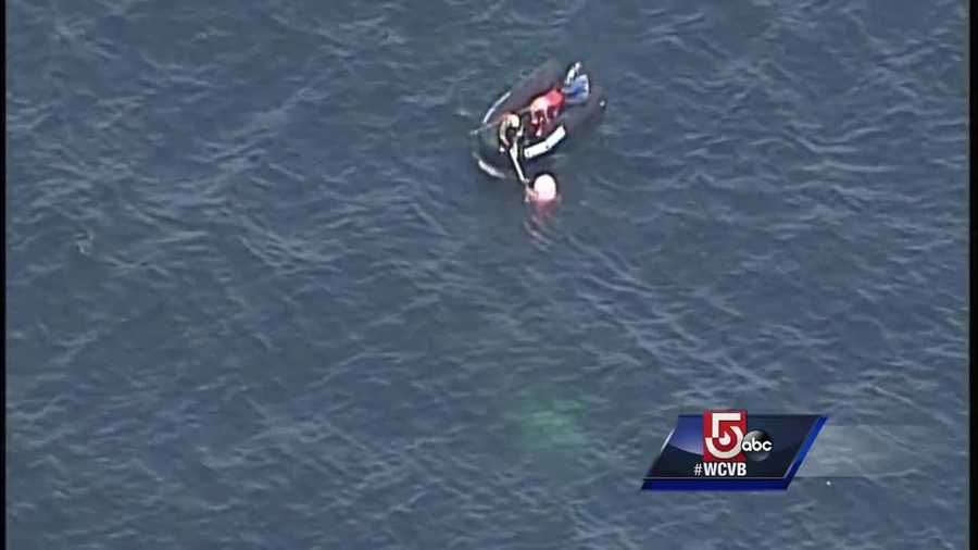 From Sky5, white fishing lines could be seen wrapped around the animal's body just below its head and flippers.