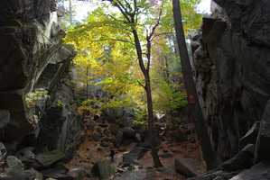 Purgatory Chasm: Popular with picnickers and rock-climbers, Purgatory Chasm is a moderate to difficult hike for those adrenaline-rush seekers. Don't hike the chasm after inclement weather. Location: 198 Purgatory Rd. Sutton MA 01590