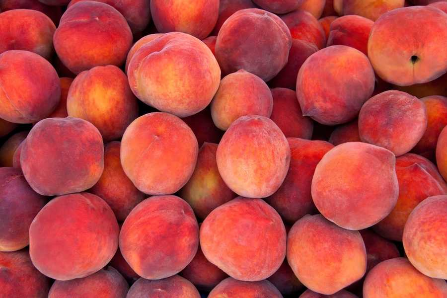 Peaches and plums - Like avocados, these are dangerous because of the pits.