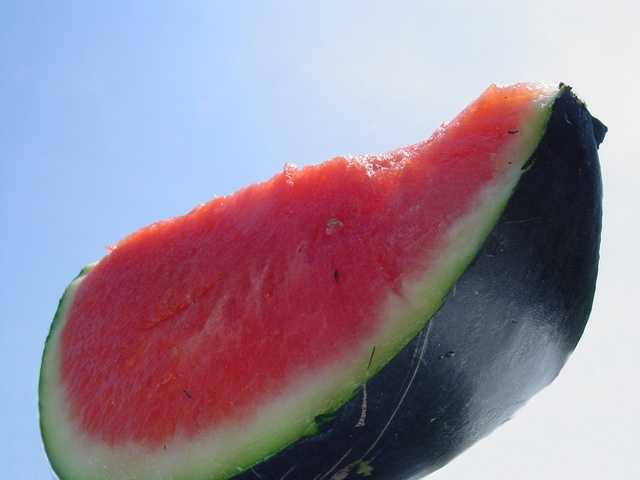 Watermelon is over 90 percent water only packs 44 calories a cup.