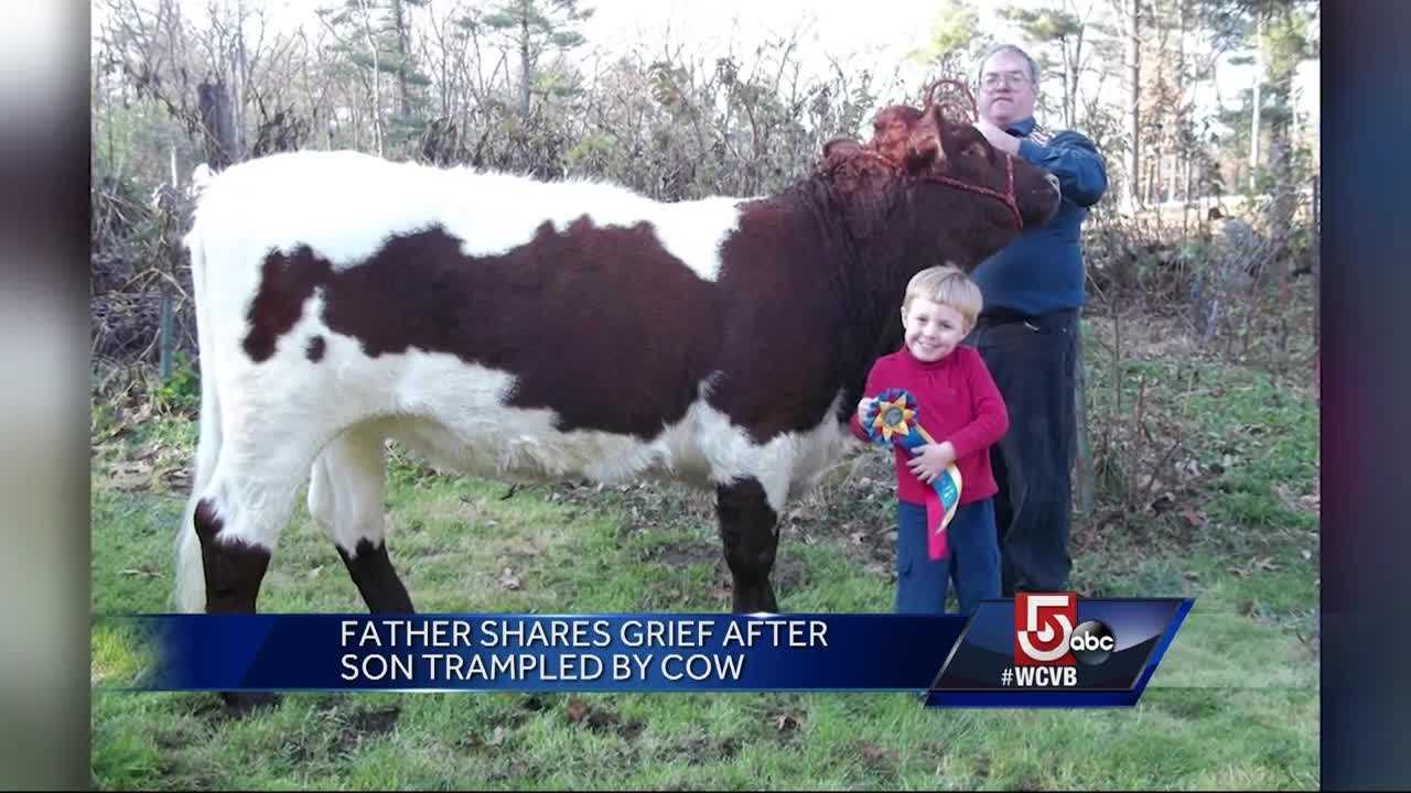 Authorities say 8-year-old George Carter and his father, Peter Carter, were exercising some of the family's 24 cows at their home in Georgetown when one cow apparently became startled and trampled George. It happened just before 1 p.m. Saturday.