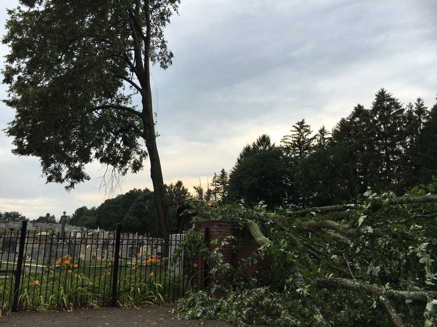 West Roxbury: Storm front brings down tree at cemmetery in West Roxbury. No injuries reported.