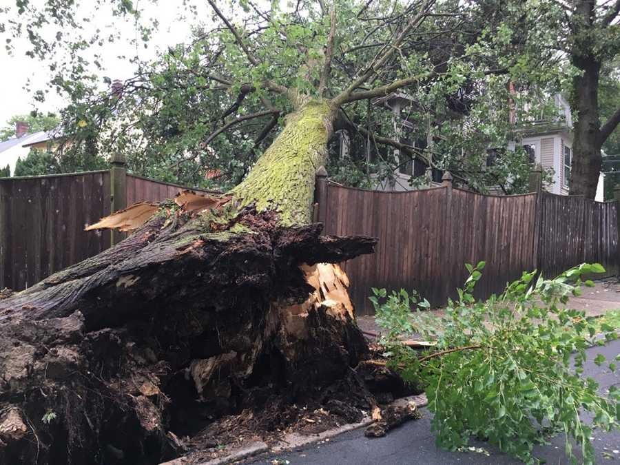 West Roxbury: Residents describe a short and intense storm.