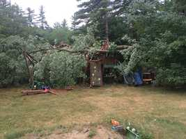 "Dunstable: ""A large maple tree fell on top of a kids treehouse in Dunstable, MA after a quick gust of wind before it down poured."""