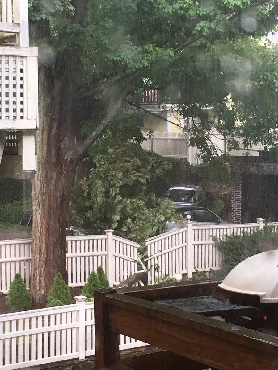 "Jamaica Plain: ""Storm damage in Jamaica Plain. What a burst! Came fast and furious."""