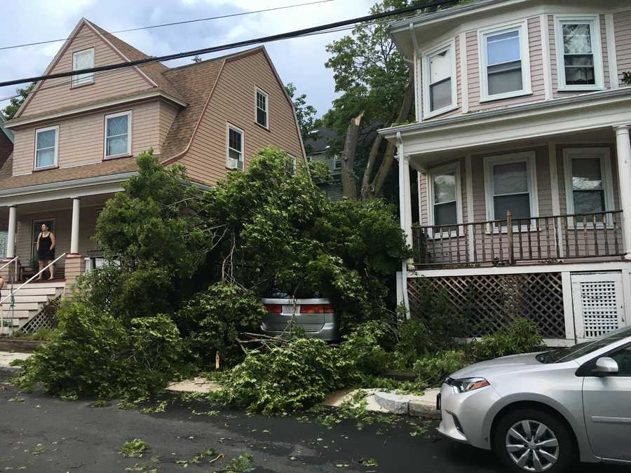 Damage was reported across Massachusetts during severe storms Saturday.