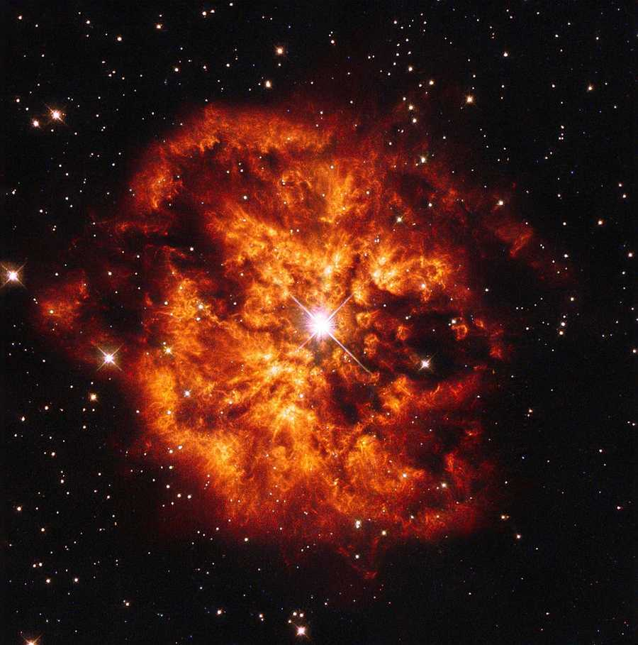 This spectacular photo shows the star Hen 2-427 and the nebula that surrounds it, M1-67.