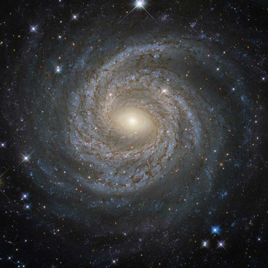 Spiral galaxies make up about 60 percent of the galaxies in the local universe, NASA said. This one is called NGC 6814.