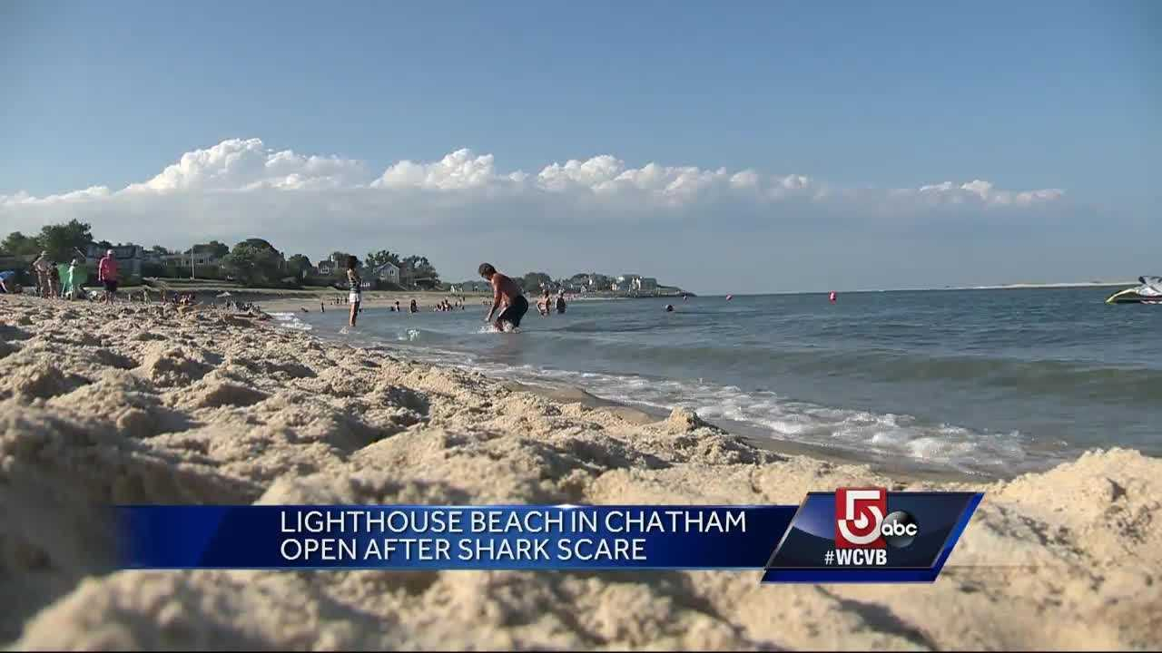 Many people were trying to cool off at Lighthouse Beach in Chatham Sunday afternoon when a shark scare forced an evacuation of the water.
