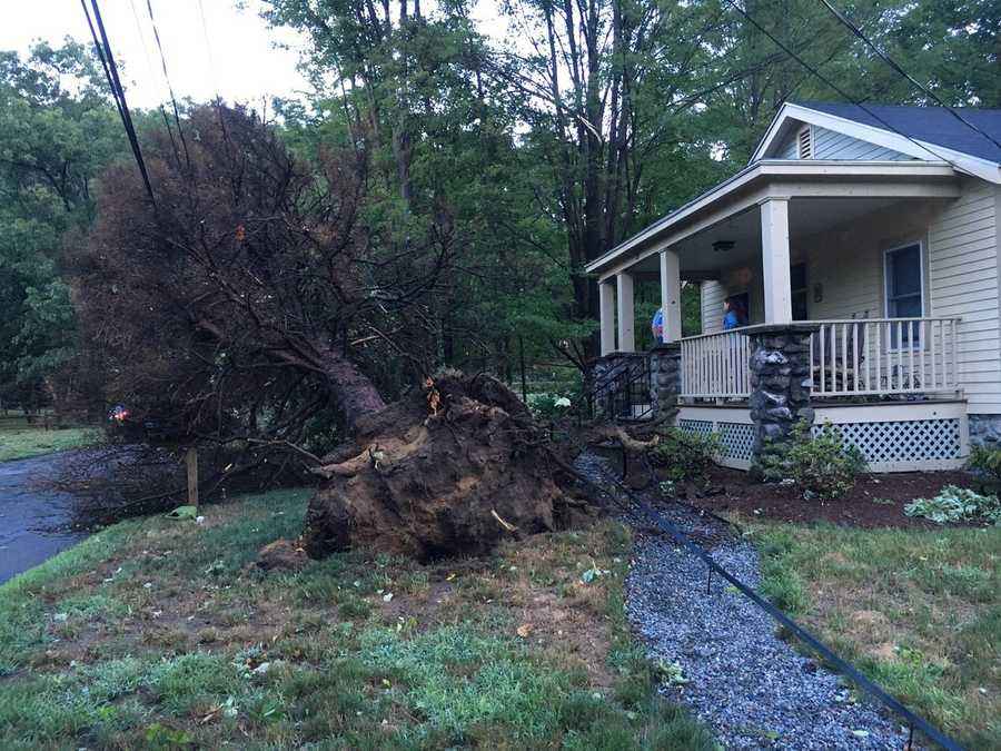 No injuries after trees came down on this Concord home.