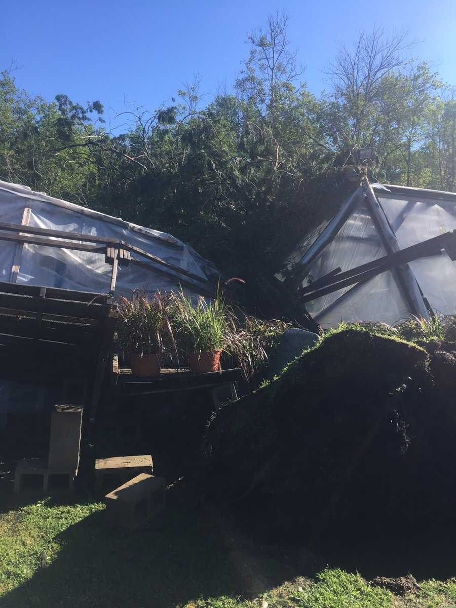 Tree onto greenhouse at Millbrook Farm in Concord. Owner says he'll have to replace whole structure.