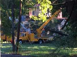 Work begins to untangle power lines from toppled trees in Concord.