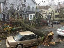Sandy brought damage to parts of Massachusetts in the form of downed trees and power outages.