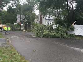 Storm damage in Waltham