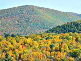 Mt. Greylock in Adams, Massachusetts. You can't go wrong with the Berkshires in fall.