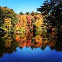 Foliage in Smithfield, Rhode Island