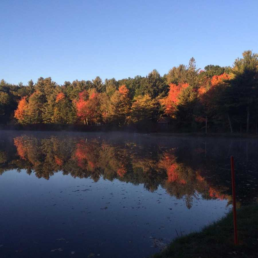Foliage in Westminster, Massachusetts by Rice Meadow Pond.