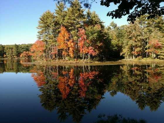 Rutland State Park in Massachusetts