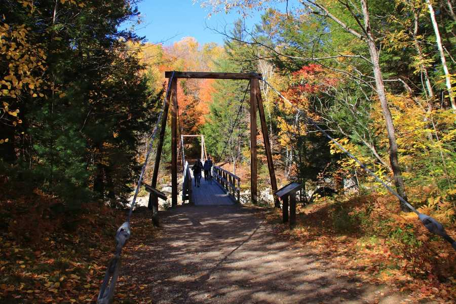 One of the best ways to experience the foliage is to take advantage of the many parking areas.  The Lincoln Woods Trailhead, pictured here, offers short nature trails between a suspension bridge and a pedestrian bridge.