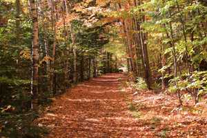 The Lincoln Woods trailhead is considered the gateway to the Pemigewasset Wilderness, the largest in the northeast.