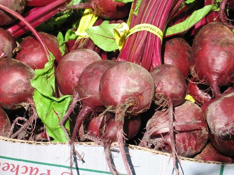 Beets, like many dark-colored fruits and vegetables, contain iron and antioxidants.
