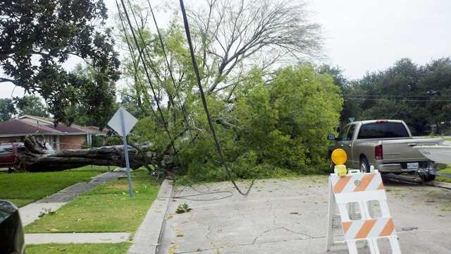 A tree fell on power lines at 22nd Street and Iowa Avenue in Kenner as strong storms moved through the city on Wednesday.