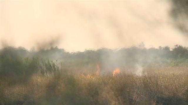 Firefighters battle marsh fire burning in New Orleans East