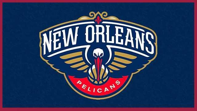 Pelicans logo 2013