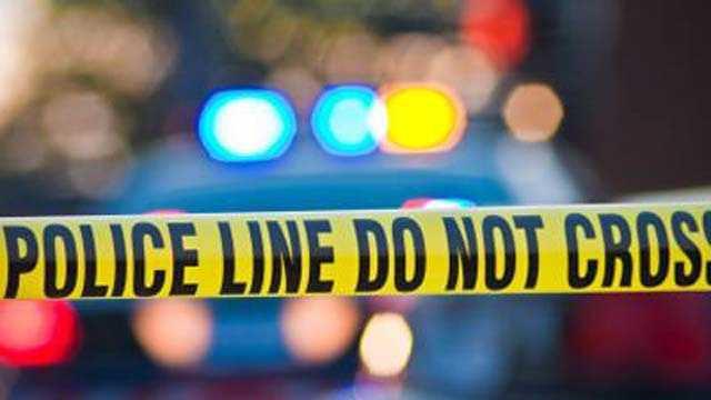 School Violence - Homicides