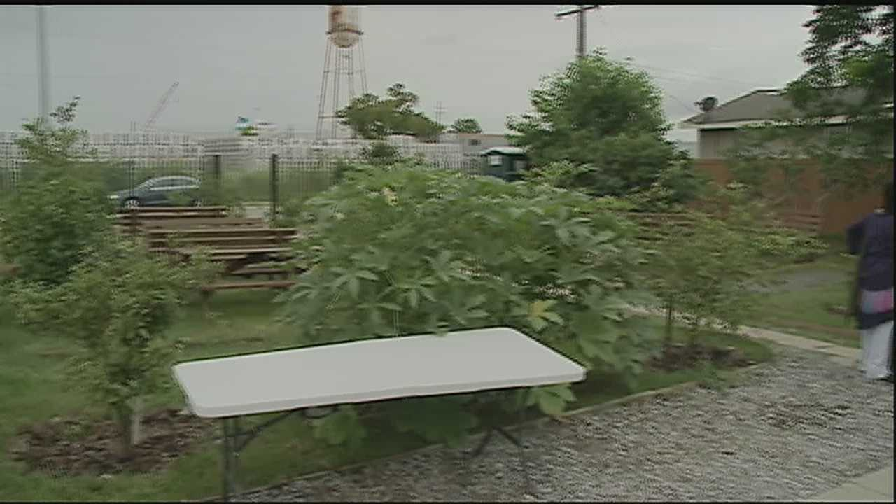 The community is pushing for neighbors to grow their own food since there is no grocery store in the area.