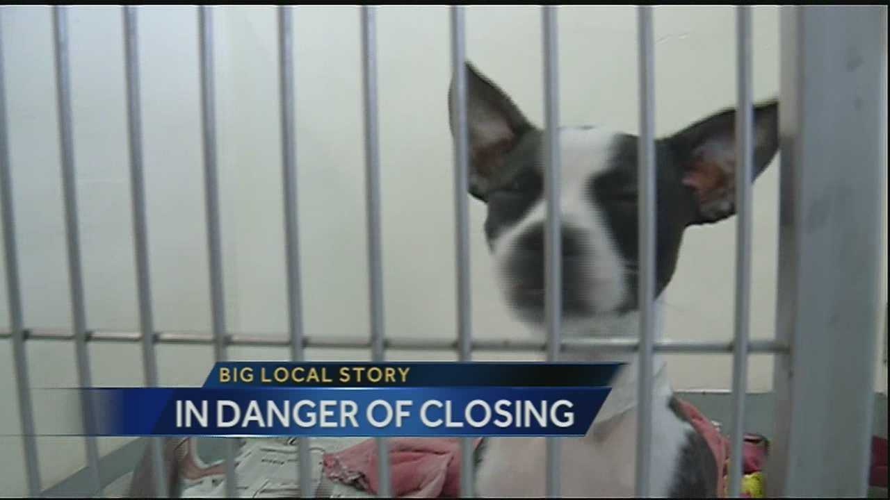 A local animal shelter is on the verge of closing after what the director calls a perfect storm of events that's left them $100,000 in the hole.