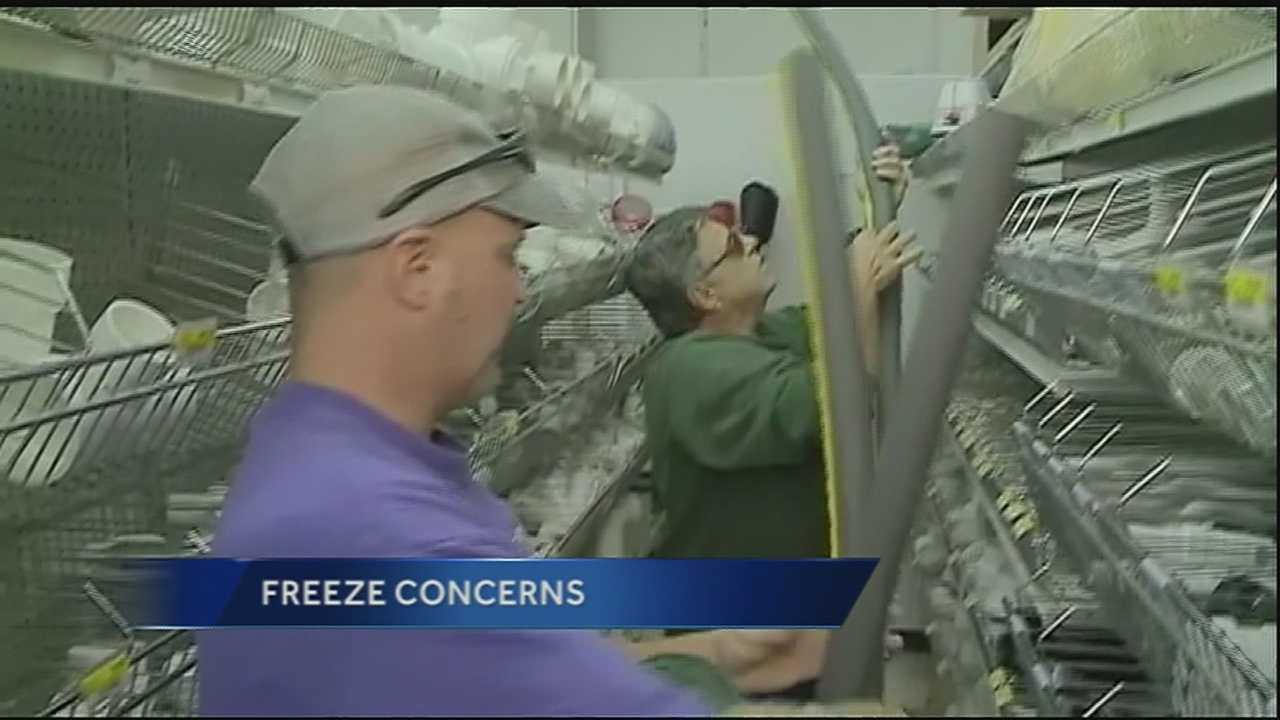 Northshore braces for cold night